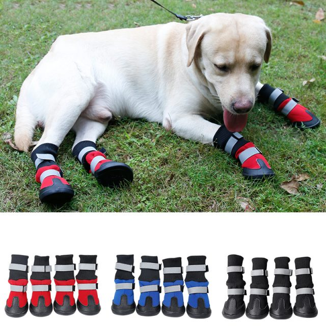 Protective Winter Boots For Pets