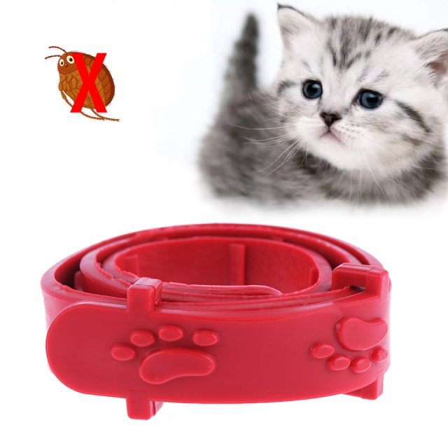 Adjustable Anti Flea Collar
