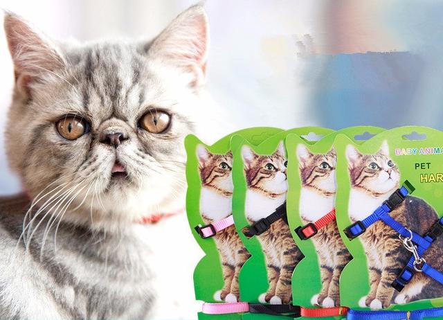 Nylon Harness for Small Pet