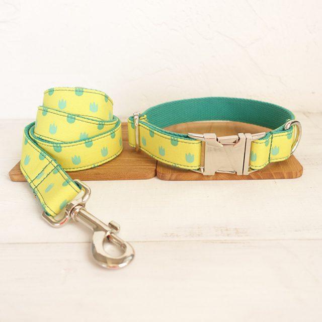 Yellow Dog Collar and Leash Set