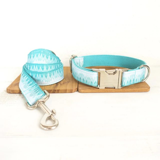 Turquois Dog Collar and Leash Set