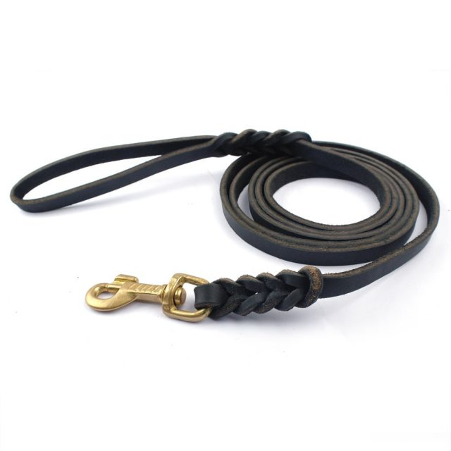 Dog's Leather Training Leash